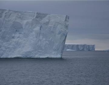 Los bancos de hielo de la Antártida han estado adelgazando desde hace 300 años
