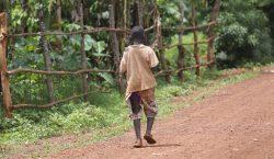 Uno de cada tres niños pequeños sufre desnutrición o sobrepeso…