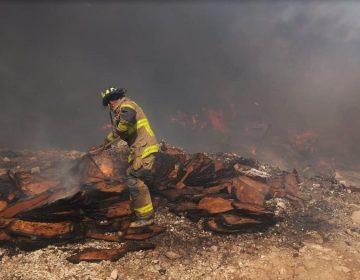 Preparan declaratoria de estado de emergencia por incendios en BC