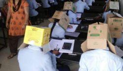 Cajas de cartón en la cabeza: la estrategia de una…