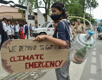 Asma y malnutrición, las consecuencias del cambio climático en el futuro de la generación que nace ahora