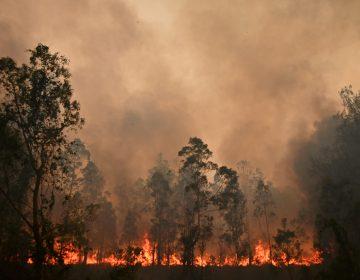 Los incendios en Australia dejan tres muertos y más de 150 hogares destruidos