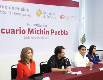 En diciembre de 2019, abrirá Acuario Michin en Puebla