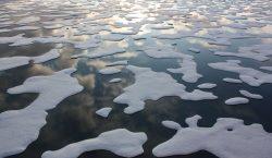 El Ártico puede quedar libre de hielo en verano en…