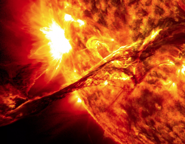 """La humanidad se extinguirá por """"heridas autoinfligidas"""" mucho antes de que el Sol trague a la Tierra: astrónomo de Harvard"""