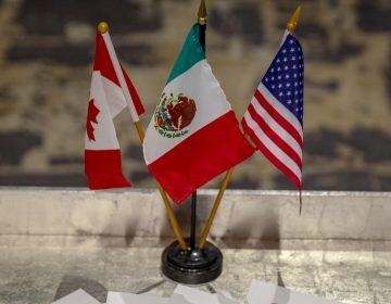 Ratificación del T-MEC: ¿Qué piden los legisladores de EU que alertó a empresarios mexicanos?