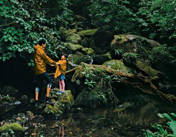 Del sauna a la ayahuasca: 8 rituales de bienestar para recibir el Año Nuevo