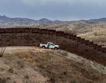 Ocho especies en peligro de extinción en Arizona debido a la construcción del muro de Trump