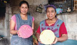 Las tostadas de Teopisca y la comunidad del maíz en…
