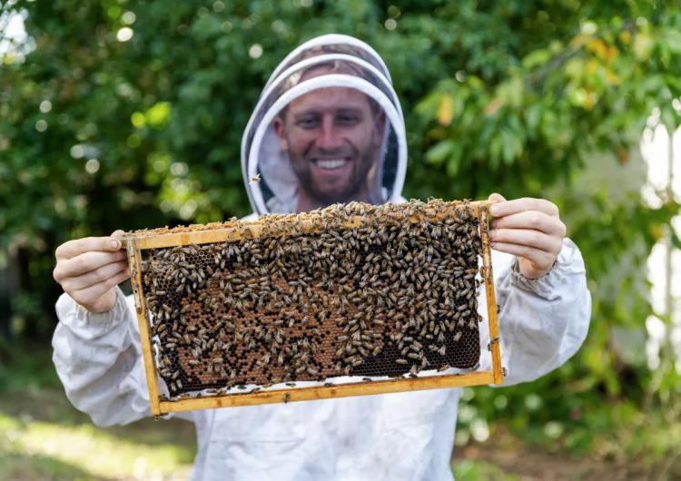 Lo que aprendió un ambientalista al cultivar sus alimentos durante un año