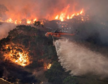Imágenes de la NASA muestra la devastación de los incendios en la Isla Canguro, en Australia