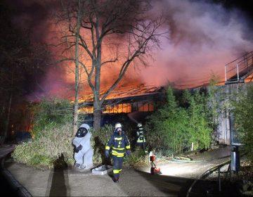 Incendio en un zoológico alemán reaviva debate sobre la pirotecnia de Fin de Año