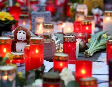 El zoológico alemán reabre sus puertas tras el incendio de Año Nuevo