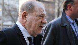 """Weinstein es señalado como un depredador sexual """"experto"""" en el…"""