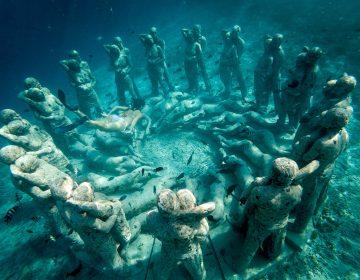 Sumergirse en el arte submarino que ayuda a la regeneración de los corales