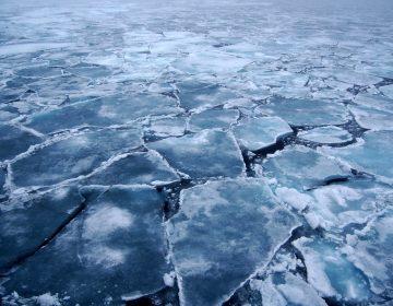 El hielo marino derretido en el Ártico no puede 'recuperarse'