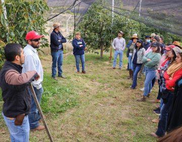 Visitan universitarios de Calvillo huertos de reconversión productiva