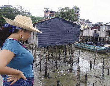 Mujeres afrocolombianas arriesgan la vida por defender sus comunidades