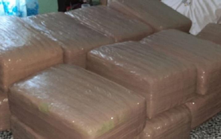 Decomisan 93 kg. de marihuana en vivienda de Aguascalientes