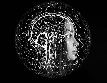 Una proteína podría revertir procesos patológicos del Alzheimer