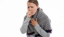 La gripe aviaria reaparece en República Checa y otros países…