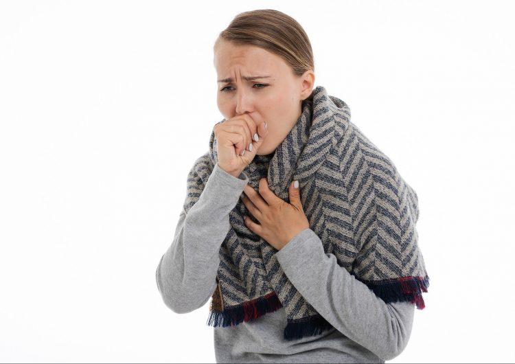 La gripe aviaria reaparece en República Checa y otros países de Europa