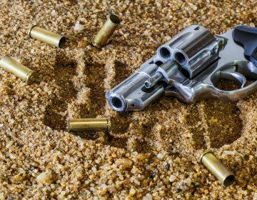 Sólo 195 armas de fuego con permiso de SEDENA en México