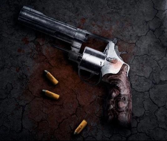 Canjean 48 armas de fuego en 2019 en Aguascalientes