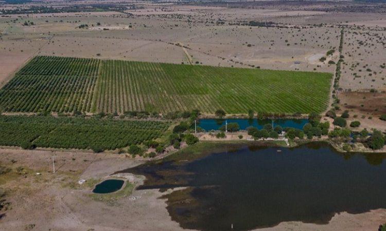 Debe investigarse a ex gobernador de Aguascalientes por concesiones de agua