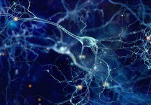 """""""Cerebro en llamas"""", la extraña enfermedad en la que el sistema inmunológico daña el cerebro"""