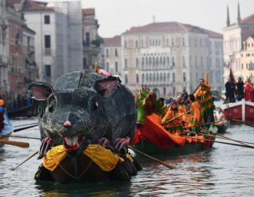 Suspenden carnaval de Venecia por coronavirus; países declaran alertas y cierran fronteras