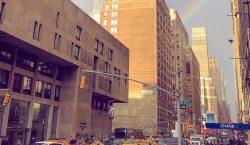 Prestigiosa escuela de moda de Nueva York se disculpa por…