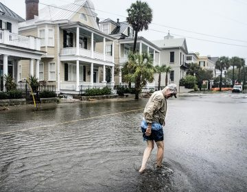 Cinco ciudades vulnerables al aumento del nivel del mar