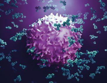 Mieloma múltiple: sobrevivir al cáncer de sangre