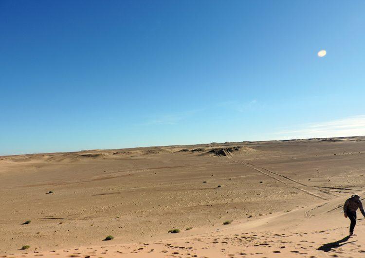 Resistir a las inclemencias del desierto y del despojo