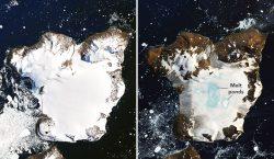Ola de calor de nueve días derrite el extremo norte de la Antártida