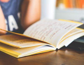 Niños que piensan que leer es cosa de niñas parecen rendir mal en los exámenes: estudio