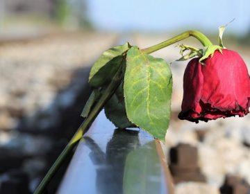 Actuó Poder Judicial en 13 expedientes de feminicidio en Aguascalientes