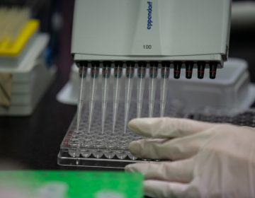 Farmacéuticas y laboratorios que trabajan para encontrar una vacuna y tratamiento contra el coronavirus