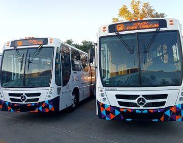 Tarjeta de estudiantes del transporte público no será válida en receso escolar