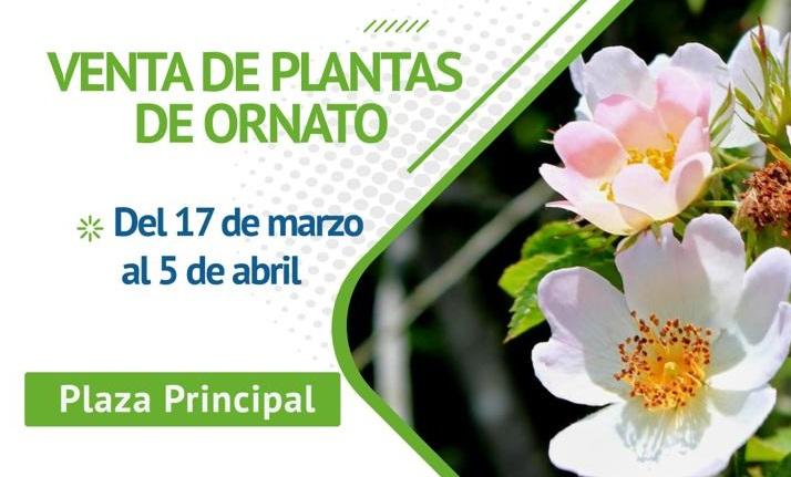 Se realizará Festival de las Flores en Jesús María