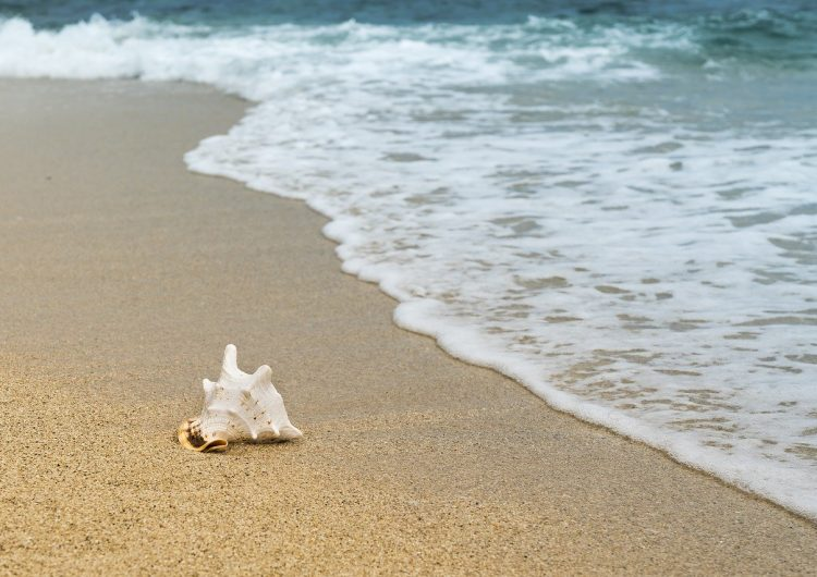 En 2100 podrían desaparecer la mitad de las playas de arena en el mundo