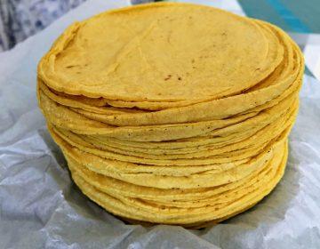No se descarta aumento en precio de las tortillas en Aguascalientes