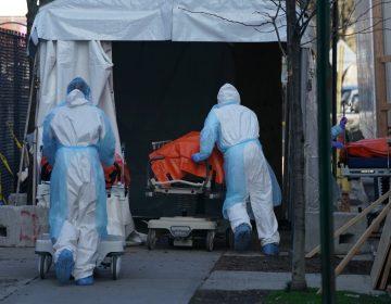 Nueva York, con más de 500 muertes diarias por COVID-19, planea entierros en parques o una isla