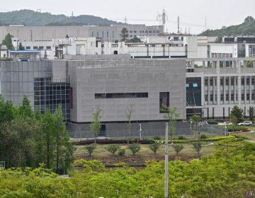 EU financió indirectamente al laboratorio de Wuhan para investigar al coronavirus