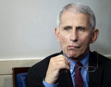"""Anthony Fauci, principal epidemiólogo de la Casa Blanca y """"héroe"""" de EU"""