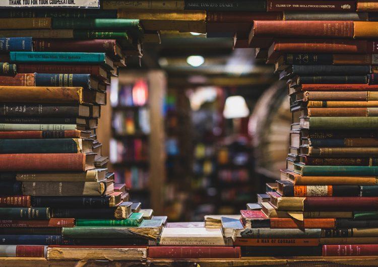 Bibliotecas muy novedosas que motivan la lectura