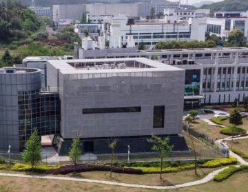 El papel del laboratorio de Wuhan previo a la pandemia de coronavirus