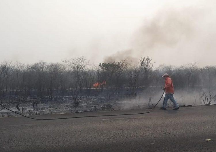 Incendios se propagan en Cancún