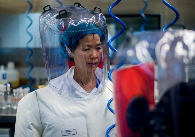 Los experimentos y el laboratorio de Wuhan relacionados con la pandemia del coronavirus